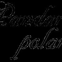 Pandara Polaris